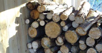 pile de bois de chauffage