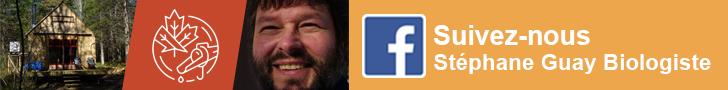 suivez Stéphane Guay sur Facebook