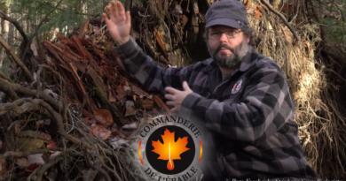 vidéo érable au fil des saisons l'automne