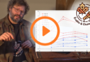 video-nombre-entailles-sur-un-erable